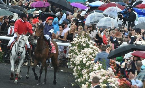 Almandin wins Melbourne Cup thriller by a nose