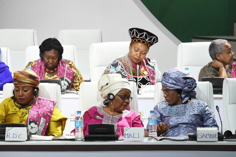 """On the sidelines of the summit at Niamey, the first ladies of Africa launched a call for a better fight against cancer, asking for an increase in taxes on """"carcinogenic products"""" such as tobacco and alcohol (AFP Photo/ISSOUF SANOGO)"""