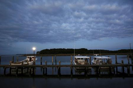 FILE PHOTO --  Crab boats are moored at the dock at dawn on Hooper's Island, Maryland August 26, 2015.  REUTERS/Jonathan Ernst
