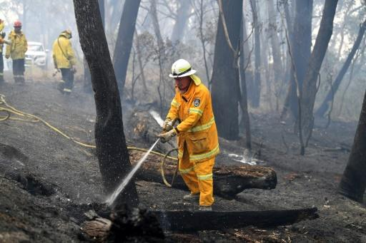 Australia is no stranger to bushfires, but even among veterans there is a sense that this year's climate change-fuelled blazes are different