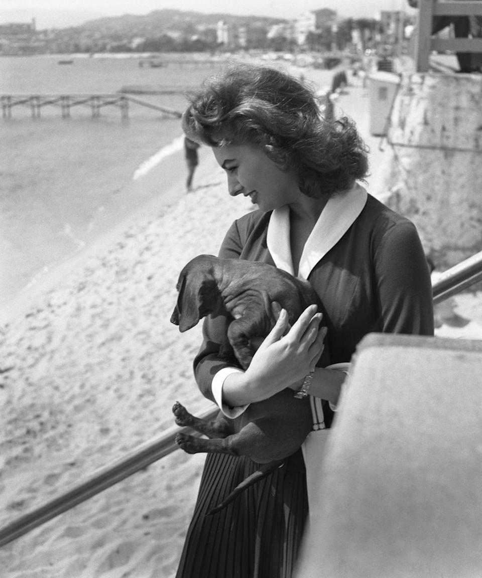<p>Italian actress Sophia Loren, wearing a shirt and a black pleated skirt, stands with her dog on the Cannes seashore, circa 1955.</p>