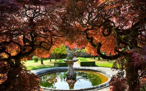 Tregrehan in early spring Circular pool and fountain, Acer palmatum - Credit: mariannemajerus.com
