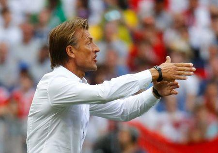 Soccer Football - World Cup - Group B - Portugal vs Morocco - Luzhniki Stadium, Moscow, Russia - June 20, 2018 Morocco coach Herve Renard gestures REUTERS/Kai Pfaffenbach