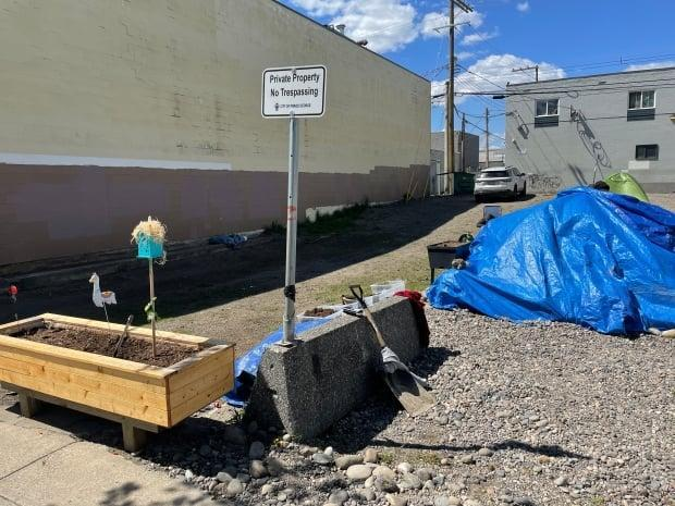 Community members have set up planter boxes on an empty city lot often used as a campsite for people without homes in Prince George, B.C. The city says it will serve notices of trespass to people on the site starting June 11. (Andrew Kurjata/CBC - image credit)