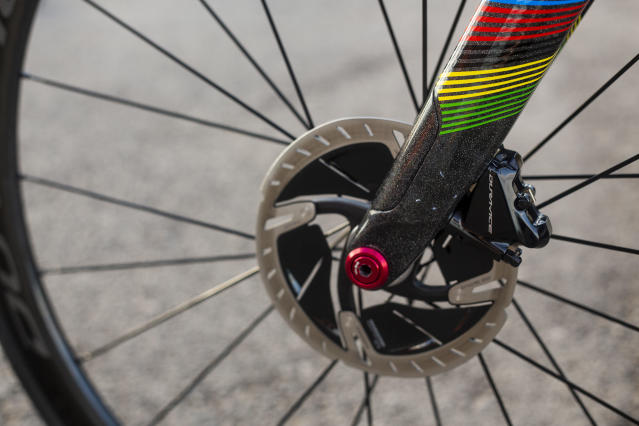 Rainbow details for the fork
