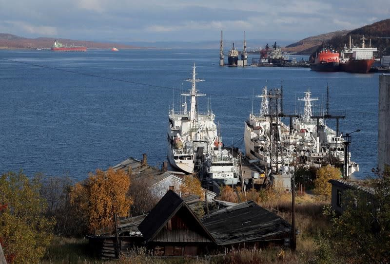 Ban on heavy fuel oil in Arctic full of holes: environmental group