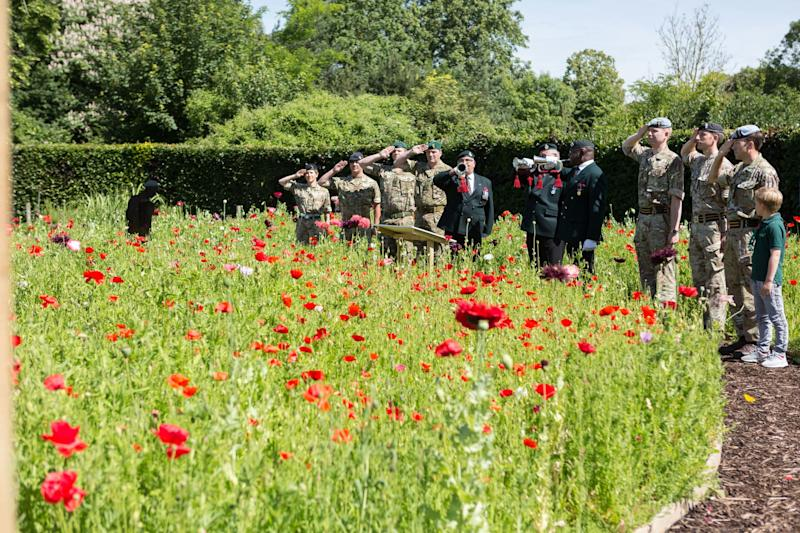 The poppy is used as a symbol to commemorate soldiers who have lost their lives in conflict (PA)