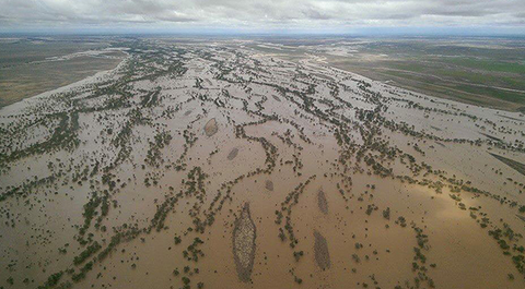 It's predicted most of Queensland's coast will be underwater in less than 100 years.