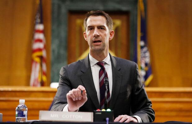 Tom Cotton Brands Interim NY Times Opinion Editor Katie Kingsbury a 'Far-Left Radical' (Video)