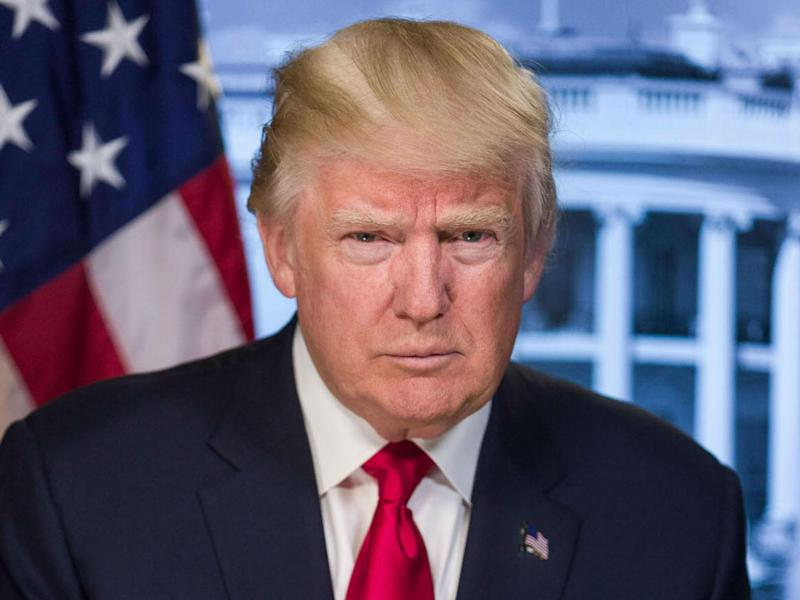 Donald Trump's official presidential portrait: White House