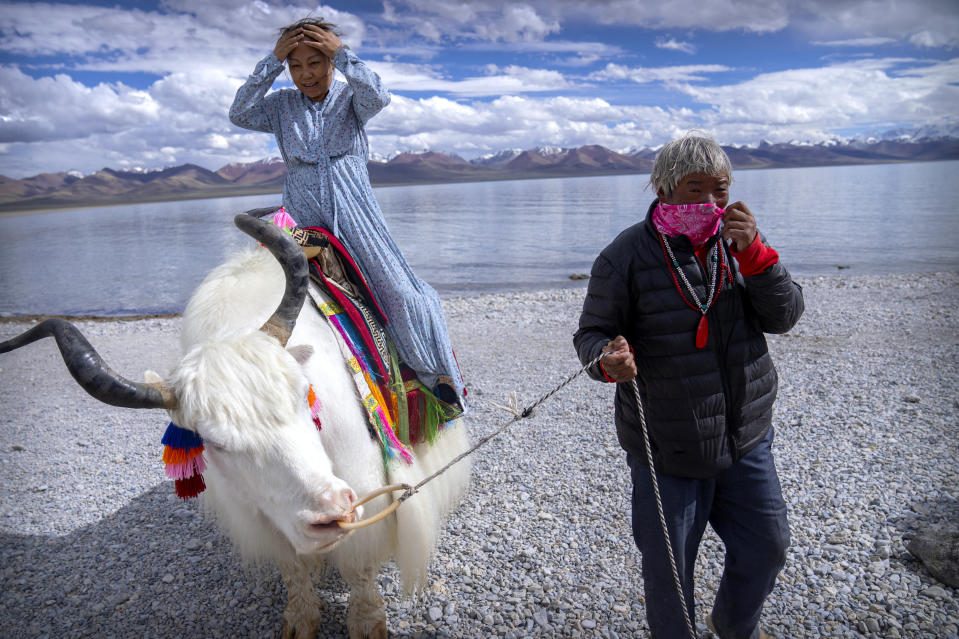 A Chinese tourist gets ready to pose for a photo atop a white yak being led by a Tibetan man in Namtso in western China's Tibet Autonomous Region, Wednesday, June 2, 2021. Tourism is booming in Tibet as more Chinese travel in-country because of the coronavirus pandemic, posing risks to the region's fragile environment and historic sites. (AP Photo/Mark Schiefelbein)