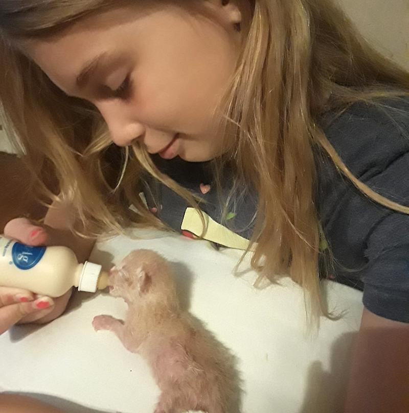Texas Girl, 10, Electrocuted After Trying to Rescue Her Kittens from Behind a Dryer