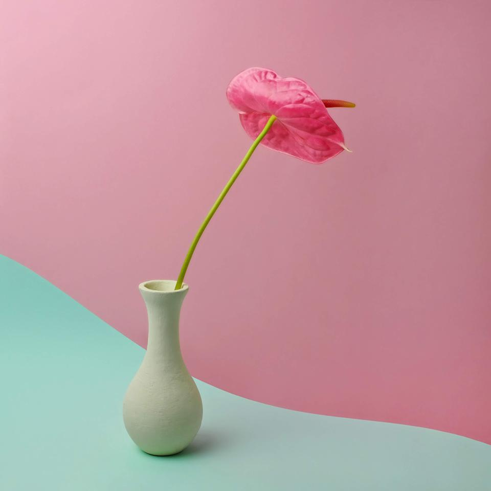 """<span style=""""font-weight:400;"""">You can't go wrong bringing flowers to a party, but you'll score even more points giving something to display them. A simple, sculptural vase makes even a bunch of bodega flowers look chic — and your hostess will definitely appreciate not having to interrupt her prep time to do the """"let me find something to put these in"""" scramble. </span>"""
