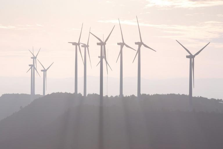 Over the past 10 years,  wind turbine prices have halved, says the International Renewable Energy Agency (IRENA)