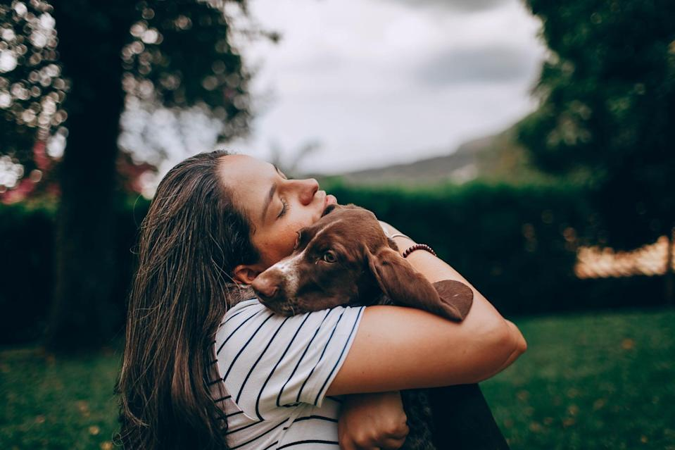 <p>If you're all alone in your apartment, pets can actually help provide the social support you may be lacking. Use this as an excuse to hold your fur baby a little closer . . . for science, of course.</p>