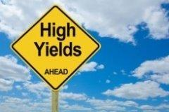 A Rough guide to Dividends, Buybacks and the Net Payout Yield