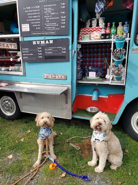 PHOTO: Seattle resident Molly Oberndorf and her two Goldendoodles, Moose and Nellie, love the bakery items for sale at the dog food truck. The pups' favorites include 'beefy sticks' and 'bacon birthfay cakes.' (mariner_moose_dood)