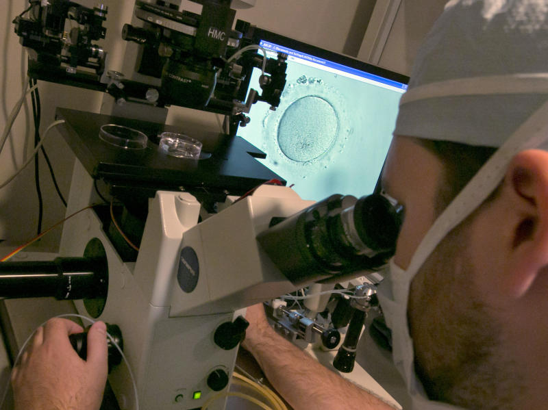 """Embryologist Rick Slifkin uses a microscope to view an embryo, visible on a monitor, right, at Reproductive Medicine Associates of New York, in New York, Thursday, Oct. 3, 2013. Fertility clinics have put a new twist on how to make babies: A """"two-mom"""" approach that lets female same-sex couples share the biological role. One woman's eggs are mixed in a lab dish with donor sperm, then implanted in the other woman who carries the pregnancy. (AP Photo/Richard Drew)"""