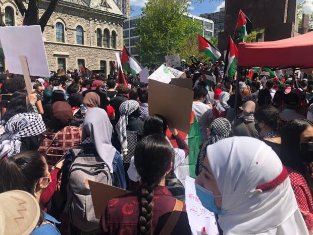 Hundreds of people hold signs and wave Palestinian flags at a rally near the Human Rights Monument in downtown Ottawa on Saturday.