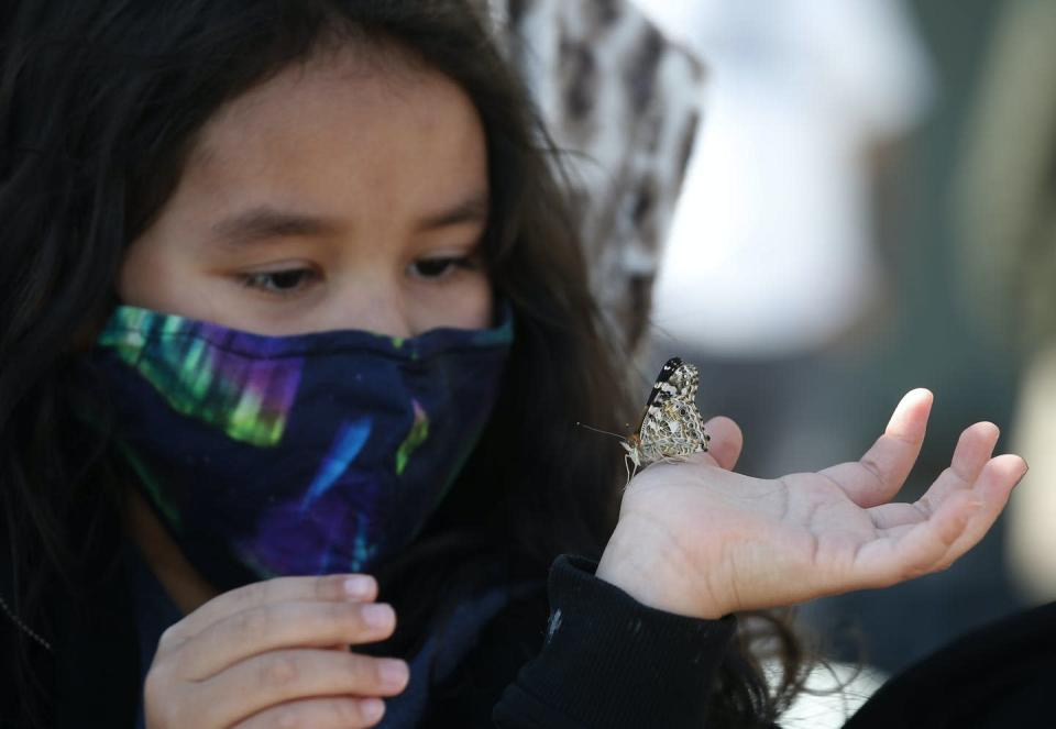 A little girl wears a northern lights mask and holds a butterfly on her hand
