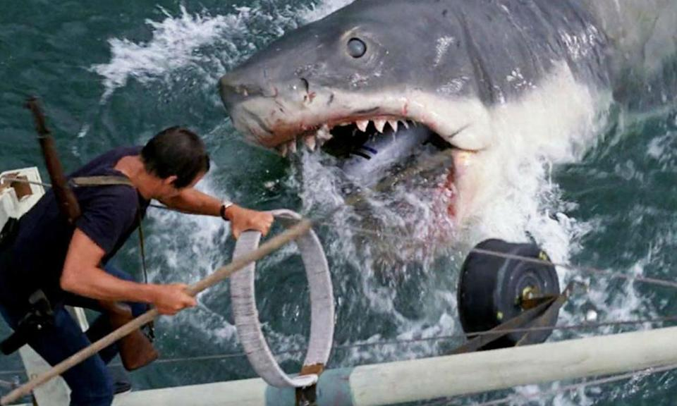 Audiences have loved shark movies ever since Jaws hit screens in 1975.
