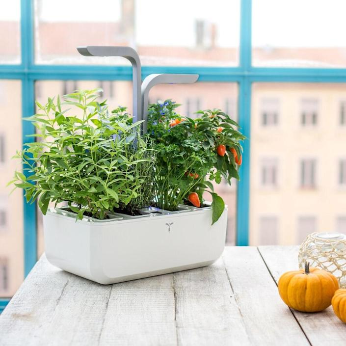 """The Smart Indoor Garden is a foolproof way to grow herbs, small vegetables, and flowers in any atmosphere—no external light is even needed. Plants are ready to harvest every four to six months, guaranteed. The kit includes seeds for basil, chives, thyme, and parsley. $189, MoMA Design Store. <a href=""""https://store.moma.org/gifts/for-hosts-hostesses/veritable%C2%AE-smart-indoor-garden/138986.html"""" rel=""""nofollow noopener"""" target=""""_blank"""" data-ylk=""""slk:Get it now!"""" class=""""link rapid-noclick-resp"""">Get it now!</a>"""