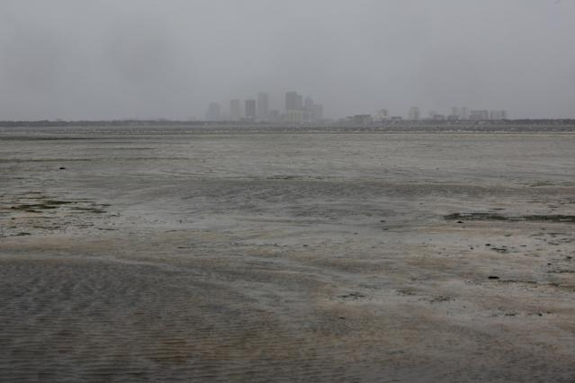 <p><strong>Tampa</strong><br>The Tampa skyline is pictured across Hillsborough Bay after water receded from the harbour ahead of the arrival of Hurricane Irma in Tampa, Fla., Sept. 10, 2017. (Photo: Chris Wattie/Reuters) </p>