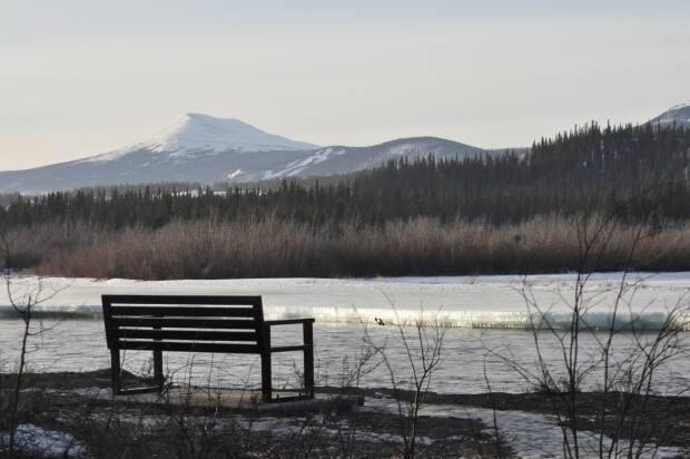 Two landlords in Whitehorse say there's no risk in giving vulnerable clients a chance as tenants. A program called Landlords Working to End Homelessness has been looking for space for clients who otherwise would have a hard time finding housing. (Philippe Morin/CBC - image credit)