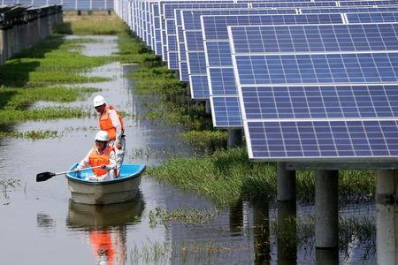 Employees row a boat as they check solar panels of a photovoltaic power generation project at a fishpond in Jingzhou