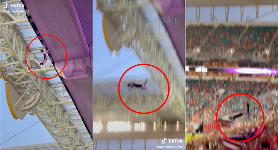 TikTok users captured the moment the cat fell but was caught by people in the crowd. Source: TikTok