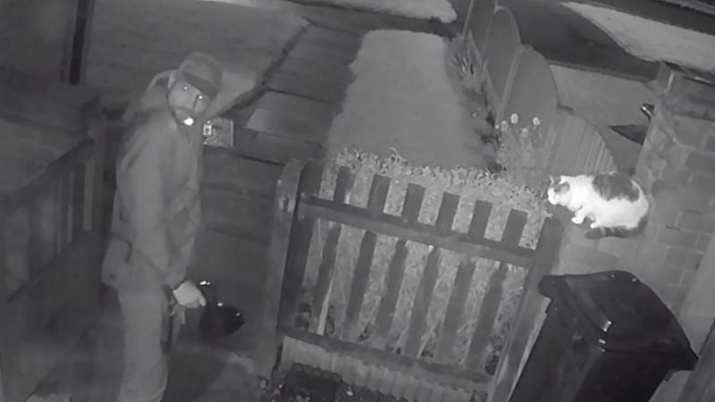 Horrifying CCTV footage shows man setting dog on pet cat