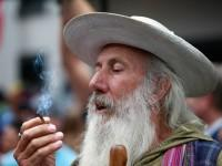 New Zealand could legalise recreational marijuana in 2020 — and this Aussie cannabis company wants a toke of the booming market to follow