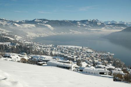 A general view during sunny winter weather shows the town of Oberaegeri, Switzerland February 5, 2019. REUTERS/Arnd Wiegmann