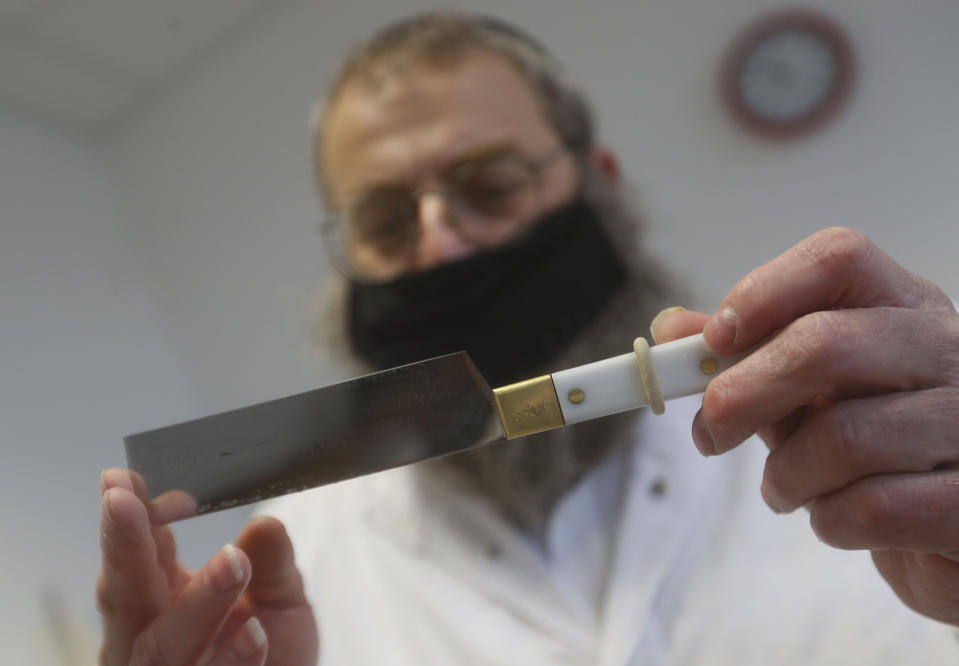 An Orthodox rabbi checks his knife in a Kosher slaughterhouse in Csengele, Hungary on Jan. 15, 2021. Hungarian Jewish community, exporter of Kosher meat, fear that the European Court of Justice verdict on upholding a Belgian law that banned ritual slaughter could have an affect on other EU member states' regulation on Kosher slaughter. Animal rights groups that pushed for the Flanders law argue that ritual slaughter without stunning amounts to animal cruelty. (AP Photo/Laszlo Balogh)