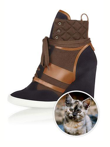 """<div class=""""caption-credit""""> Photo by: net-a-porter</div><b>German Rex Cat</b> <br> While the ochre-swirled German Rex cat is beyond adorable, its coat provides the perfect color story to mimic Chloe's suede, leather, and canvas wedge sneakers--an equally perfect companion. Chloé Suede, Leather and Canvas Wedge Sneakers, $760; <a href=""""http://www.net-a-porter.com/product/364663"""" rel=""""nofollow noopener"""" target=""""_blank"""" data-ylk=""""slk:net-a-porter.com"""" class=""""link rapid-noclick-resp"""">net-a-porter.com</a>. <p> <a href=""""http://www.marieclaire.com/hair-beauty/trends/celebrity-tips/five-short-hairstyles-that-will-get-you-laid?link=rel&dom=yah_life&src=syn&con=blog_marieclaire&mag=mar"""" rel=""""nofollow noopener"""" target=""""_blank"""" data-ylk=""""slk:Related: 5 Short Hairstyles We Love"""" class=""""link rapid-noclick-resp""""><b>Related: 5 Short Hairstyles We Love</b></a> </p>"""