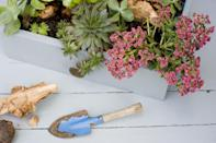 """<p>It's not new but the visual ideas-sharing app has hundreds of upcycling projects for repurposing unwanted items, such as furniture. </p><p>There's also plenty of zero-waste Christmas gift wrapping ideas and recipe inspiration for transforming leftovers into a delicious lunch.</p><p><a rel=""""nofollow noopener"""" href=""""https://itunes.apple.com/gb/app/pinterest-lifestyle-ideas/id429047995?mt=8"""" target=""""_blank"""" data-ylk=""""slk:DOWNLOAD NOW"""" class=""""link rapid-noclick-resp"""">DOWNLOAD NOW</a></p>"""