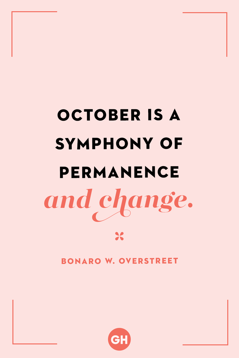 <p>October is a symphony of permanence and change.</p>