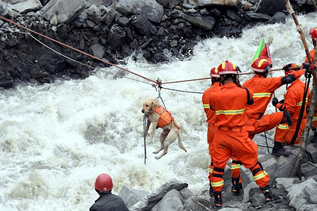 <p>Rescue workers pull a rescue dog across a river at the site of a landslide in the village of Xinmo, Mao County, Sichuan Province, China June 25, 2017. (Photo: CNS/An Yuan via Reuters) </p>