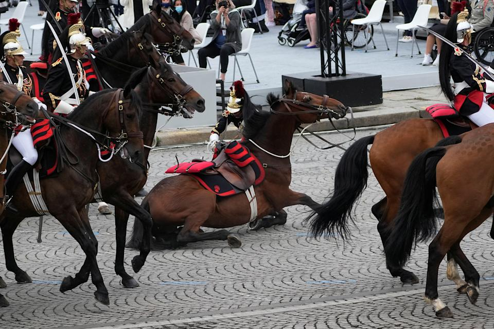 Two horses stumbled while parading on the Champs-Elysees (REUTERS)