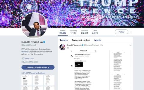 This image of Donald Trump Jr.'s Twitter account shows a series of direct messages he received from the Twitter account behind the WikiLeaks website, including his responses to the communications, which he posted on Monday - Credit: Donald Trump Jr.'s Twitter account via AP