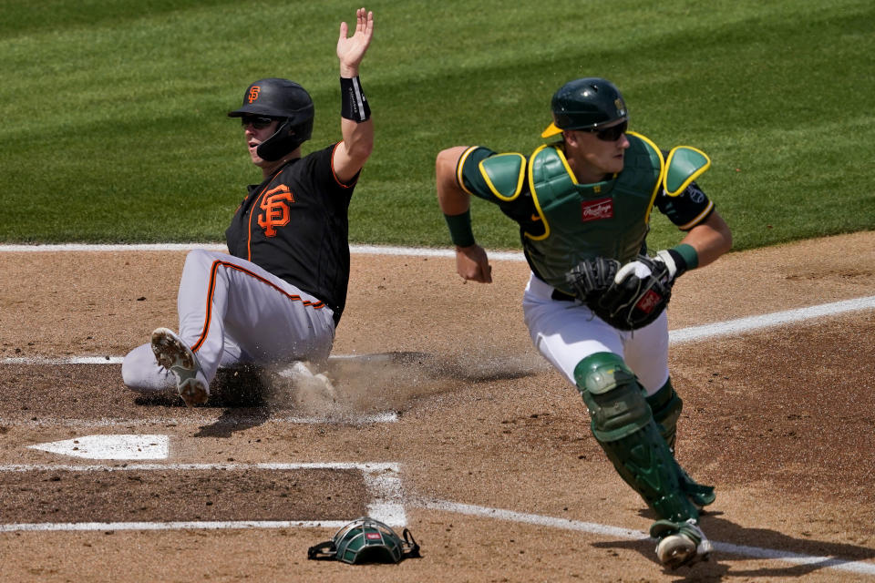 San Francisco Giants' Buster Posey scores on a base hit by teammate Mauricio Dubon as Oakland Athletics catcher Sean Murphy waits for the throw during the first inning of a spring training baseball game, Monday, March 29, 2021, in Mesa, Ariz. (AP Photo/Matt York)