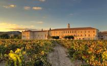 <p>For your trip down memory lane with your siblings, take a trip back in time to the medieval abbey and estate that houses <span>LeDomaine</span>, which dates back to 1146. Located between Madrid and Vallodalid, this historic hotel offers a glimpse into the past and modern luxury perfect for an indulgent weekend with your siblings. Sample the estate's single-terroir wine (or, you know, learn what that is), indulge in Michelin-starred cuisine, go mountain biking or horseback riding on the estate, take a helicopter ride, and even check out falconry displays. To truly unwind, try vinotherapy, which is so much more than a glass of wine on the couch while watching <em>Oprah</em>. The estate's award-winning 10,000-square foot spa's signature treatment involves blind tasting of wines with Europe's first 'Spa Sommeliers' who guide guests on their wellness journey.</p>