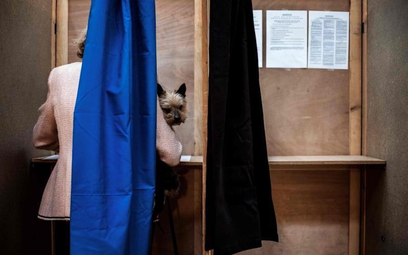 A woman with ger dog votes at a polling station in Lyon - Credit: JEFF PACHOUD/AFP