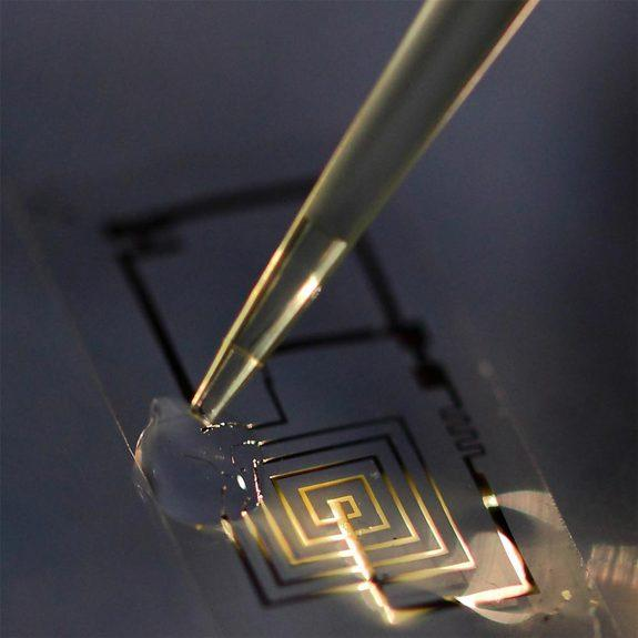 A biodegradable electronic circuit begins to dissolve in a drop of water.