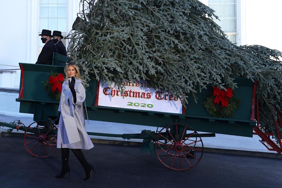 Melania Trump poses with the White House Christmas tree  (Getty Images)