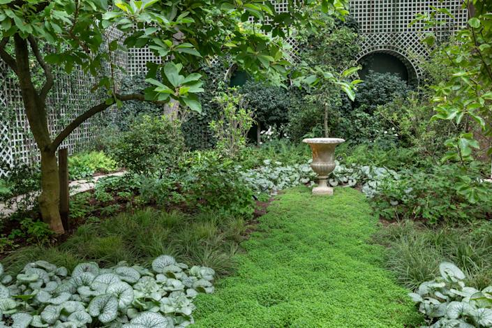 """The woodland features a tapestry of ground cover, including silver Brunnera """"Jack Frost,"""" and an emerald """"lawn"""" of soleirolia, leading the eye to an antique stone urn."""