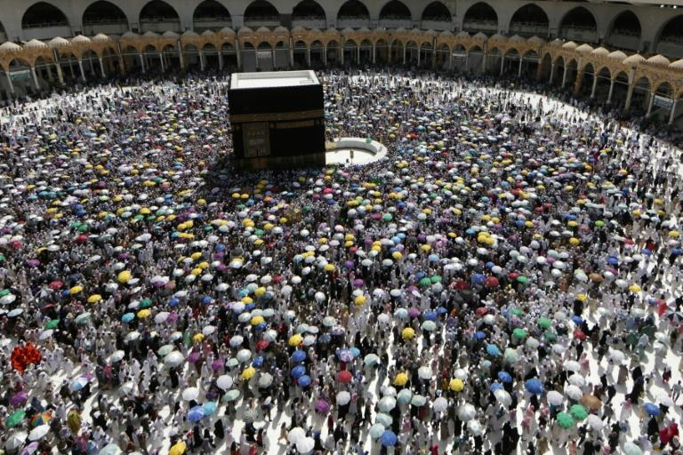 Analysts have expressed serious doubt about the Saudi government's capacity to handle a major virus outbreak among the millions of pilgrims who perform the annual hajj (AFP Photo/Abdel Ghani BASHIR)