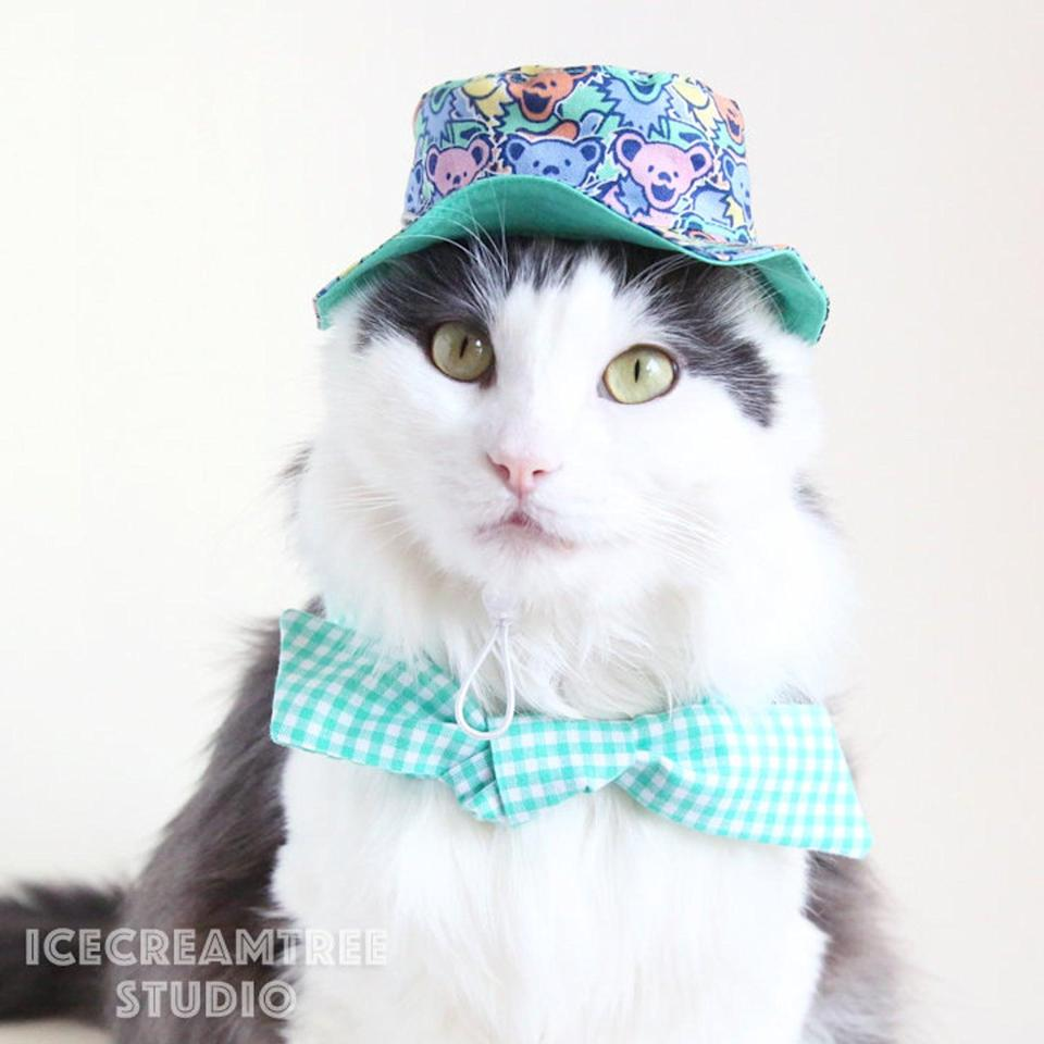 """<p>Bucket hats aren't just for relaxing dads; they also look great on pet companions too. </p> <p><strong>Buy it!</strong> Reversible Dancing Bears Pet Bucket Hat, $20.00; <a href=""""https://www.awin1.com/cread.php?awinmid=6220&awinaffid=272513&clickref=PEO10FathersDayGiftsforCatandDogDadsWhoAreObsessedwithTheirPetskbender1271PetGal12773282202106I&p=https%3A%2F%2Fwww.etsy.com%2Flisting%2F966733668%2Freversible-dancing-bears-bucket-hat-pet"""" rel=""""sponsored noopener"""" target=""""_blank"""" data-ylk=""""slk:Etsy.com"""" class=""""link rapid-noclick-resp"""">Etsy.com</a></p>"""