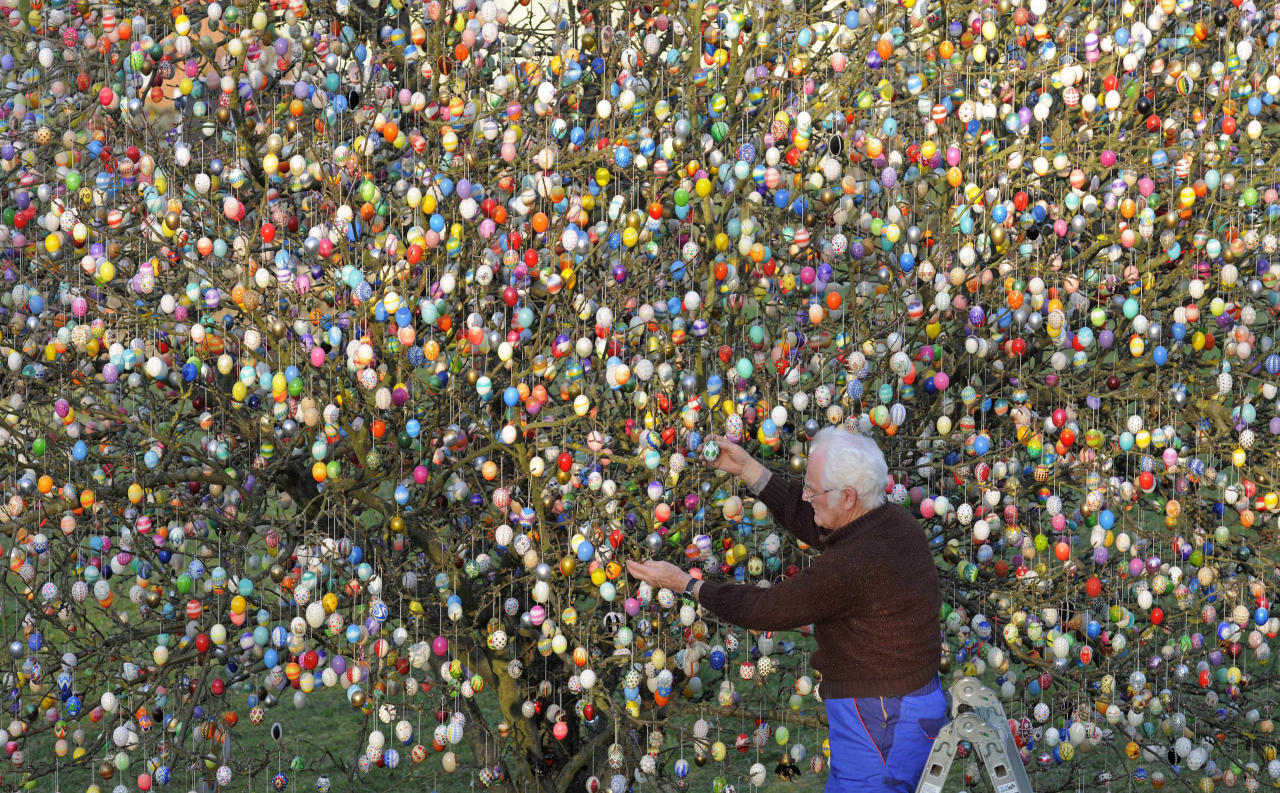 FILE - In this March 21, 2012 file picture Volker Kraft decorates a tree with 10,000 Easter eggs in the garden of the retired couple Christa and Volker Kraft in Saalfeld, Germany. The Kraft family has been decorating their tree for Easter for more than forty years. Kraft's apple sapling sported just 18 eggs when he first decorated it for Easter in 1965. The number increased year by year; and by last year, the sturdy tree was festooned with 9,800 eggs, artfully decorated with everything from sequins to sea shells. This time, Kraft has reached 10,000 - and he says he's stopping there. (AP Photo/Jens Meyer,File)