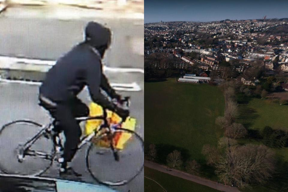 Nine sex attacks happened in just five hours in Singleton Park, Swansea, police said. (South Wales Police/Google Maps)